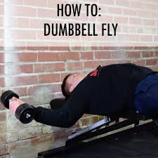 how to dumbbell fly u2013 spartansuppz