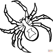 creepy coloring pages giant spider coloring page kids drawing and coloring pages