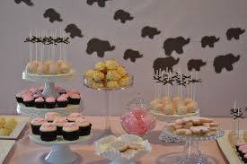 a silver nutmeg safari baby shower