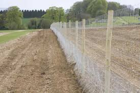 fenced in garden design ideas and fenced types of deer fencing in