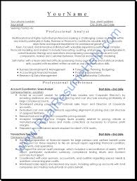 Resumes For It Jobs by Sample Resumes For Professionals Resume Cv Cover Letter