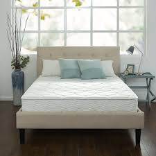 amazon com zinus sleep master ultima comfort 8 inch spring