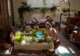 indoors garden woolley pockets build your own garden of eden inhabitat green