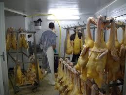 cuisiner un canard gras découpe canard et cuisine ferme de ramon sud ouest ferme de ramon