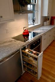 furniture comely kitchen decoration design with cabinet pull out