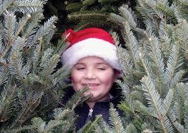 paralyzed man u0027s christmas tree sale benefits children with medical