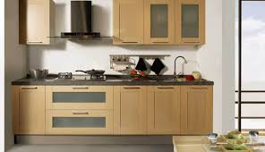 Kitchen Wall Cabinet Doors by Cabinet Ikea Cabinet Doors Light Hearted Alternative To Ikea