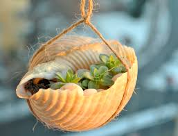 how to make a seashell planter 12 steps with pictures wikihow