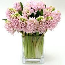 november seasonal flowers which flowers are in season bridalguide