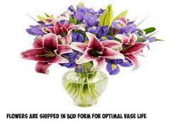 Vase With Irises Best Seller Benchmark Bouquets Stargazer Lilies And Iris With