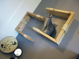 Wall Shelves For Cats 221 Best Diy Catification And Climbing Cat Shelves Furniture