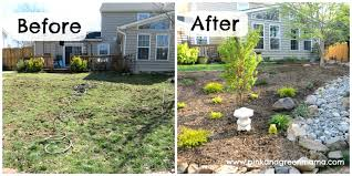 landscaping ideas for a low maintenance yard image garden trends