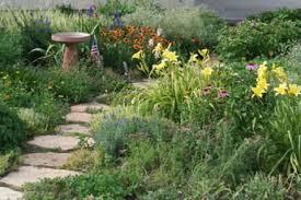 low maintenance organic gardening familyeducation
