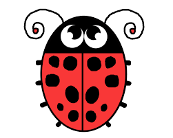 lady bug illustration free stock photo public domain pictures