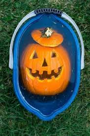 Good Pumpkin Ideas Halloween - some of the best pumpkin carvings i ever saw scifiology scary
