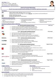 cook resume objective examples executive chef resume sample