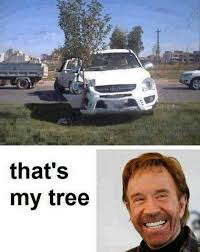 Most Funny Meme - thats my tree