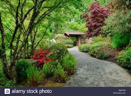 Botanical Garden Bellevue Yao Japanese Garden At Bellevue Botanical Gardens Bellevue Stock