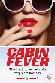 a must have book for the modern hostess thoughtfully simple cabin fever the sizzling secrets of a virgin air hostess amazon