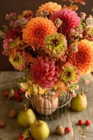 Autumn Flower 81 Best Flowers Images On Pinterest Flowers Nature And Plants