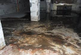 Flooring For Basements That Flood How To Clean Up A Flooded Basement Columbus Oh