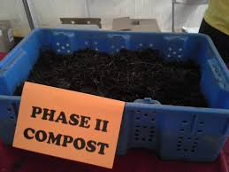 gardening the epa blog