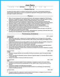 Professional Accountant Resume Example Resume Format For Accountant