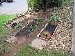 vegetable garden sun requirements best 25 vegetable garden design ideas on pinterest vege garden