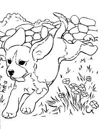 littlest pet shop coloring pages of dogs doggy coloring pages littlest pet shop coloring pages dog puppy