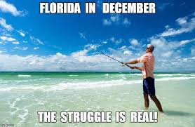 Florida Winter Meme - the 25 best florida memes about america s weirdest state