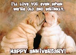 anniversary ecards free myfuncards dog anniversary send free special occasions