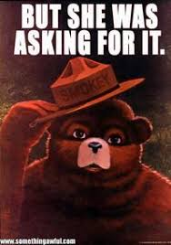 Smokey The Bear Meme - smokey the bear image gallery sorted by oldest know your meme