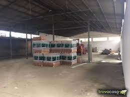 affitto capannoni capannoni in affitto in provincia di roma trovacasa net