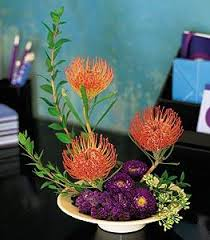 Deliver Flowers Today Pin Cushion Protea Bowl Colma Florist Funeral Flowers San