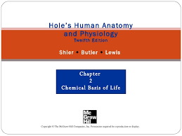 Holes Human Anatomy And Physiology 13th Edition Chapt02 Holes Lecture