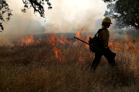 How To Get Wildfire Cases Fast by California Fire Season To Be Severe Despite End Of Drought Time Com