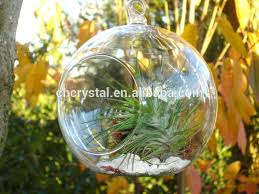 mh kx019 100 wholesale clear glass ornament buy