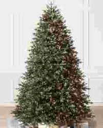 christmas tree with colored lights pre lit christmas trees with color clear lights balsam hill