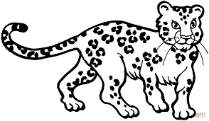 leopard 4 coloring page free printable coloring pages