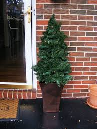 shop 6 8 ft fresh balsam fir christmas tree at lowes com