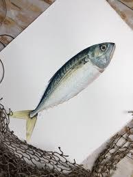 original watercolor painting of a mackerel fish animal art