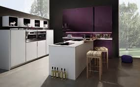 Purple Kitchen Designs by Contemporary Kitchen Wooden Lacquered Matte Tio Purple