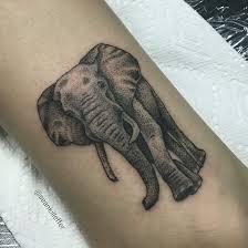 Tattoo Artist Resume Mesa Club Tattoo