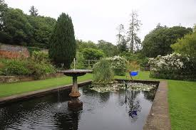ornamental pond picture of picton castle gardens
