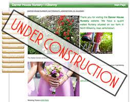 wedding flowers kilkenny websites affordable web design seo kilkenny product