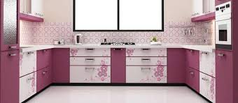 cool parallel kitchen design pictures best inspiration home