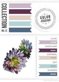 ncs color system national color system 40 hues color wheel