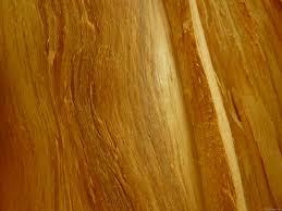 mlewallpapers com pine wood ii