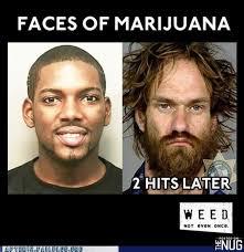 Super Bowl Weed Meme - funny marijuana memes the nug