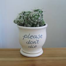 ceramic succulent planter please don u0027t die gift
